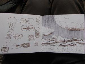 Drawings_2010_2011_11