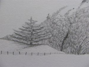 Drawings_2010_2011_4