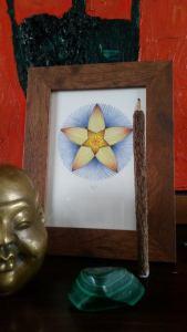 mandala joel framed